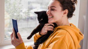 5 dicas para tirar fotos a gatos com o smartphone