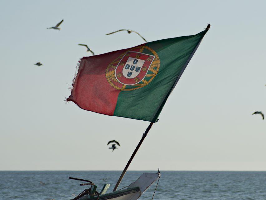 Portugueses estão disponíveis a partilhar maior número de dados para ultrapassar a pandemia