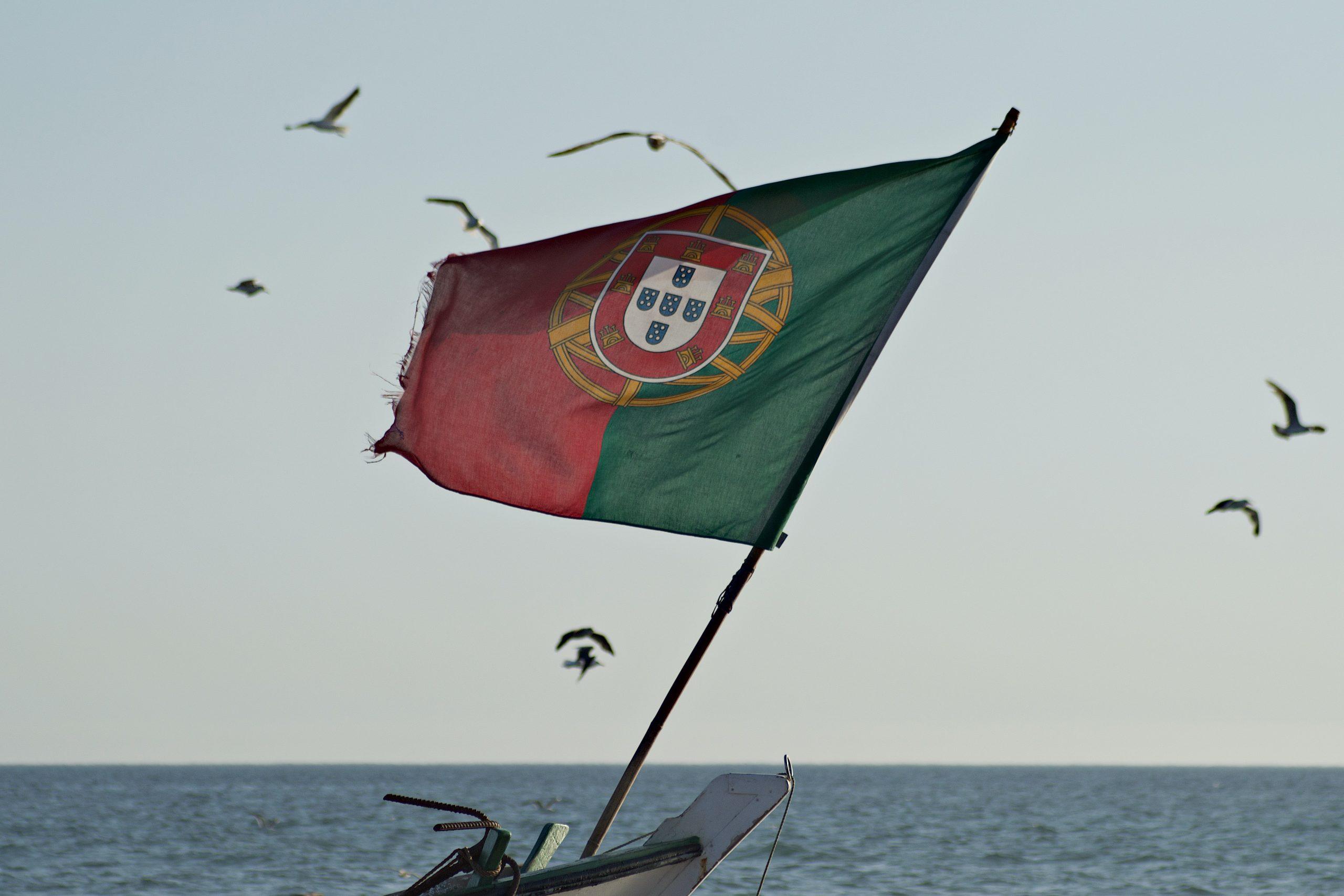 portugal bandeira gaivotas saude portugueses
