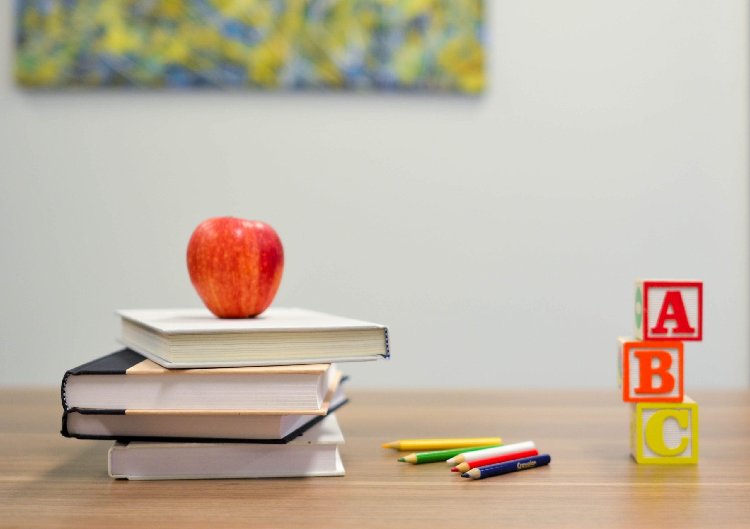 ensino livros maca lapis escola